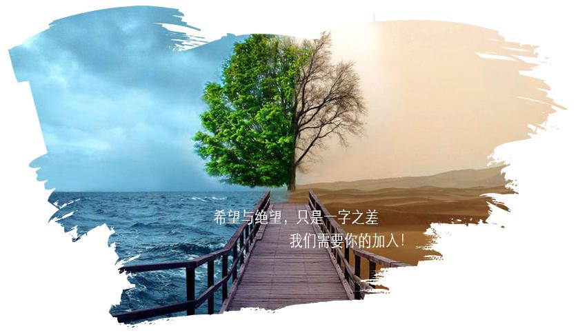 zhihou2
